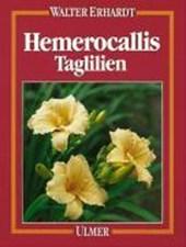 Hemerocallis. Taglilien