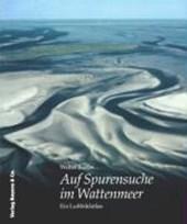 Auf Spurensuche im Wattenmeer