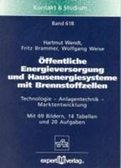 Öffentliche Energieversorgung und Hausenergiesysteme mit Brennstoffzellen