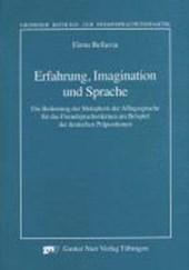 Erfahrung, Imagination und Sprache