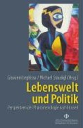 Lebenswelt und Politik