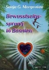 Bewusstseinssprung in Bosnien