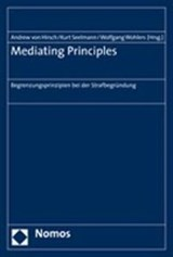 Mediating Principles | auteur onbekend |