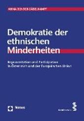 Demokratie der ethnischen Minderheiten