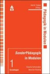 SonderPädagogik in Modulen