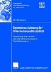 Operationalisierung und Unternehmensflexibilität