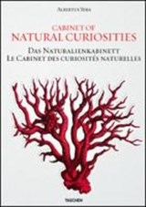 Seba. Cabinet of Natural Curiosities | Albertus Seba ; Irmgard Musch ; Jes Rust ; Rainer Willmann |