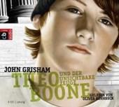 Theo Boone und der unsichtbare Zeuge