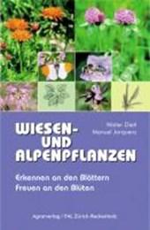 Wiesen- und Alpenpflanzen