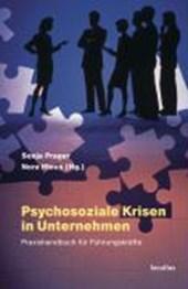 Psychosoziale Krisen in Unternehmen