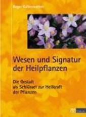 Wesen und Signatur der Heilpflanzen
