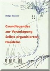 Grundlegendes zur Veranlagung Selbst-organisierten Handelns mit einer empirischen Studie im Bereich der Lebensmittelindustrie in der Schweiz