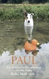 PAUL - Alles MEINS und alles gewonnen, also alles Bestens