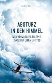 Absturz in den Himmel