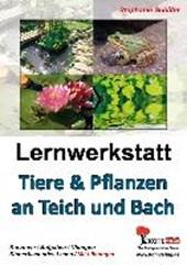 Tiere & Pflanzen an Teich und Bach
