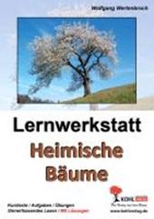 Lernwerkstatt Heimische Bäume