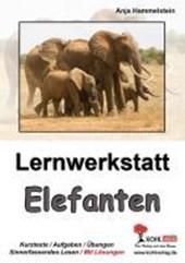 Lernwerkstatt Elefanten
