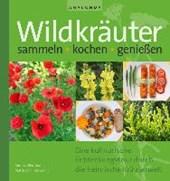 Wildkräuter sammeln, kochen, genießen