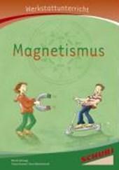 Magnetismus - Werkstatt