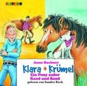 Klara + Krümel: Ein Pony und zwei kleine Wunder