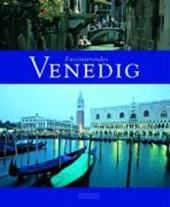 Faszinierendes Venedig