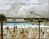 Joel sternfeld american prospects
