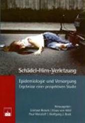 Schädel-Hirn-Verletzung - Epidemiologie und Versorgung