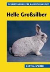 Helle Großsilber