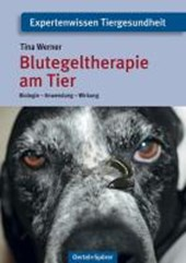 Blutegeltherapie am Tier