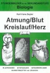 Biologie. Atmung / Blut / Kreislauf / Herz