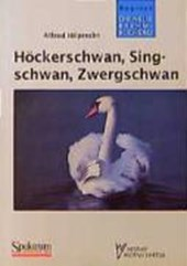 Höckerschwan, Singschwan, Zwergschwan
