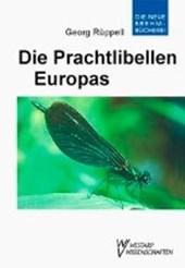 Die Prachtlibellen Europas