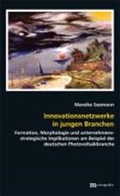 Innovationsnetzwerke in jungen Branchen