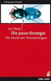 Die Jesus-Strategie