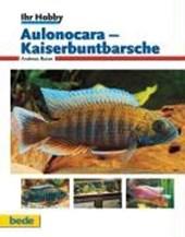 Ihr Hobby Aulonocara - Kaiserbuntbarsche