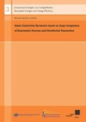 Smart Electricity Networks based on large integration of Renewable Sources and Distributed Generation