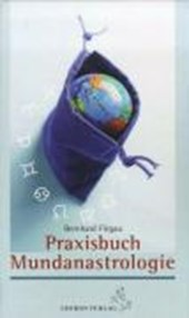 Praxisbuch Mundanastrologie