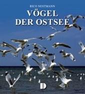 Vögel der Ostsee