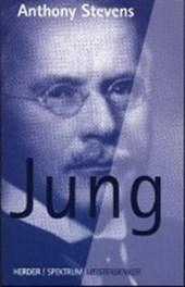 Stevens, A: Meisterdenker: Jung