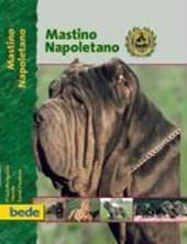 Mastino Napoletano