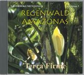 Regenwald Amazonas 3. Terra Firme