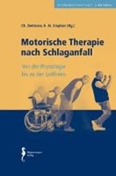 Motorische Therapie nach Schlaganfall