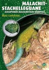 Malachit-Stachelleguane