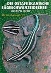 Die Ostafrikanische Sägeschwanzeidechse