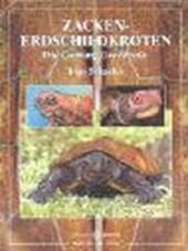 Zacken-Erdschildkröten