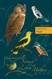 Heimische Tiere - Vögel