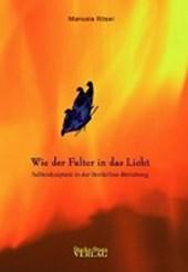 Wie der Falter in das Licht