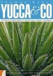 Yucca & Co