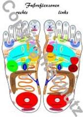 Fußreflexzonenübersicht