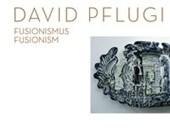 David Pflugi - Fusionismus | Fusionism